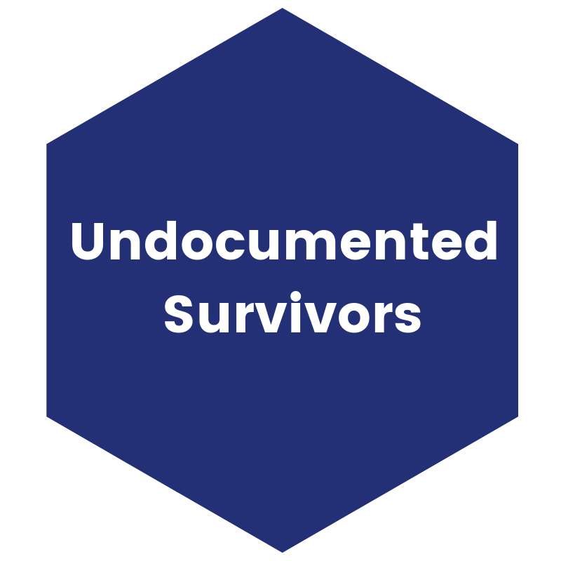 Undocumented Survivors